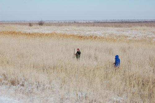 Поисковые работы на замёрзших болотах